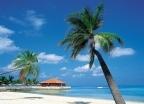 Wczasy Wyspy Kanaryjskie - Why Not HOLIDAYS - wczasy, urlopy, wakacje