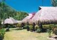 Hibiscus (Moorea) - wczasy, urlopy, wakacje