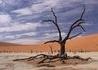 Fly & Drive - Namibia - wczasy, urlopy, wakacje