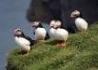 Dookoła Islandii - wczasy, urlopy, wakacje