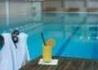 Wellness Balaton - wczasy, urlopy, wakacje