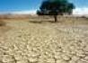 Namibia Jak Na Dłoni - wczasy, urlopy, wakacje