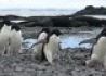 Antarktyda - Argentyna - wczasy, urlopy, wakacje