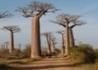 Południowy Madagaskar Z Mauritiusem - wczasy, urlopy, wakacje