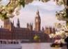 Wielka Brytania - wczasy, urlopy, wakacje