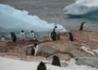 Antarktyczny Ekspres - wczasy, urlopy, wakacje